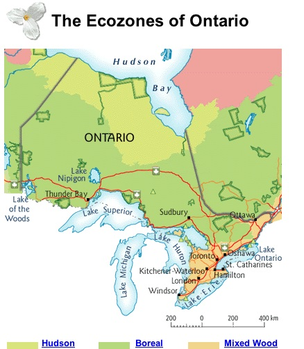 a geography of southern ontario The eastern woodland hunters were located in southwest and southern ontario (excluding the very the eastern woodlands was quite diverse in terms of geography.