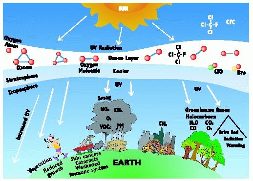 Acid Rain: 5 Adverse Effects of Acid Rain