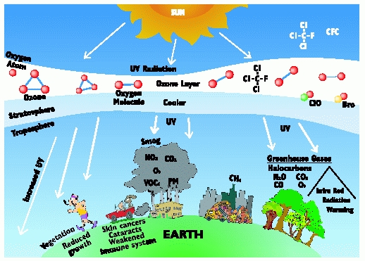 the causes of global warming and its impacts on humanity and environment Causes of global warming  (also known as global warming) and what are the effects of climate change learn the human impact and consequences of climate change for the environment, and our .
